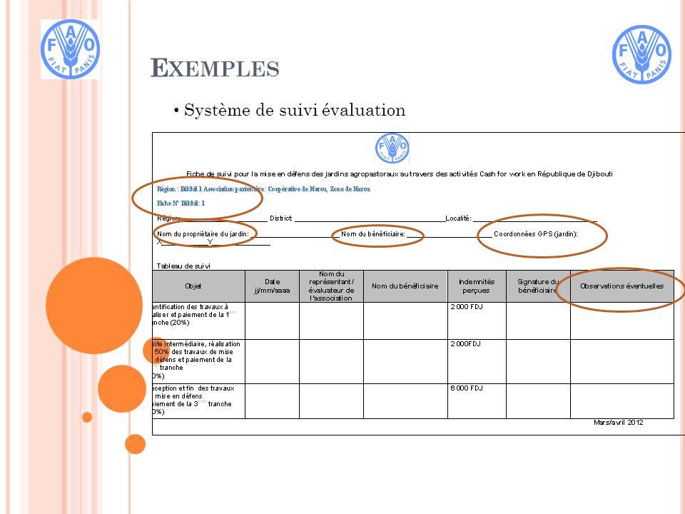 E XEMPLES Système de suivi évaluation