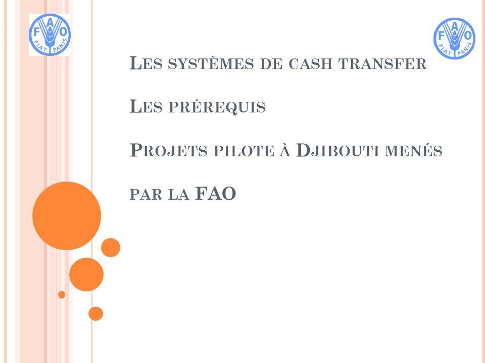 L ES SYSTÈMES DE CASH TRANSFER Différentes systèmes: bon déchange, incluant les transfer avec ou sans condition Cash for work (CFW): argent contre travail Objectif du CFW CFW fournit un apport immédiat en liquide visant le rétablissement immédiat et/ou à moyen terme Assurance que les populations et/ou communautés soient fixées, évitant ainsi plus de déplacement Maintien des liens sociaux, des systèmes économiques en place et les capacités structurelles fonctionnelles Appui la stabilité et la prévention des crises