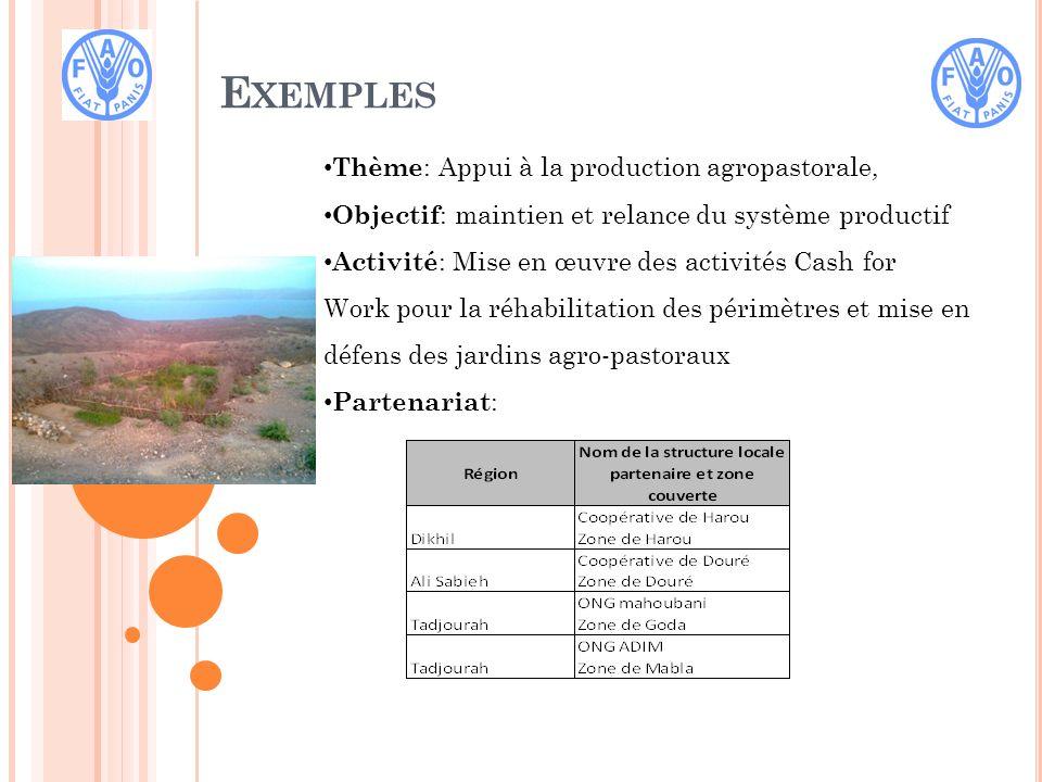 E XEMPLES Phase de mise en oeuvre: Identification des besoins et des moyens Améliorer la capacité de résilience des populations rurales à travers des activités qui ont pour but une amélioration de la production agricole.