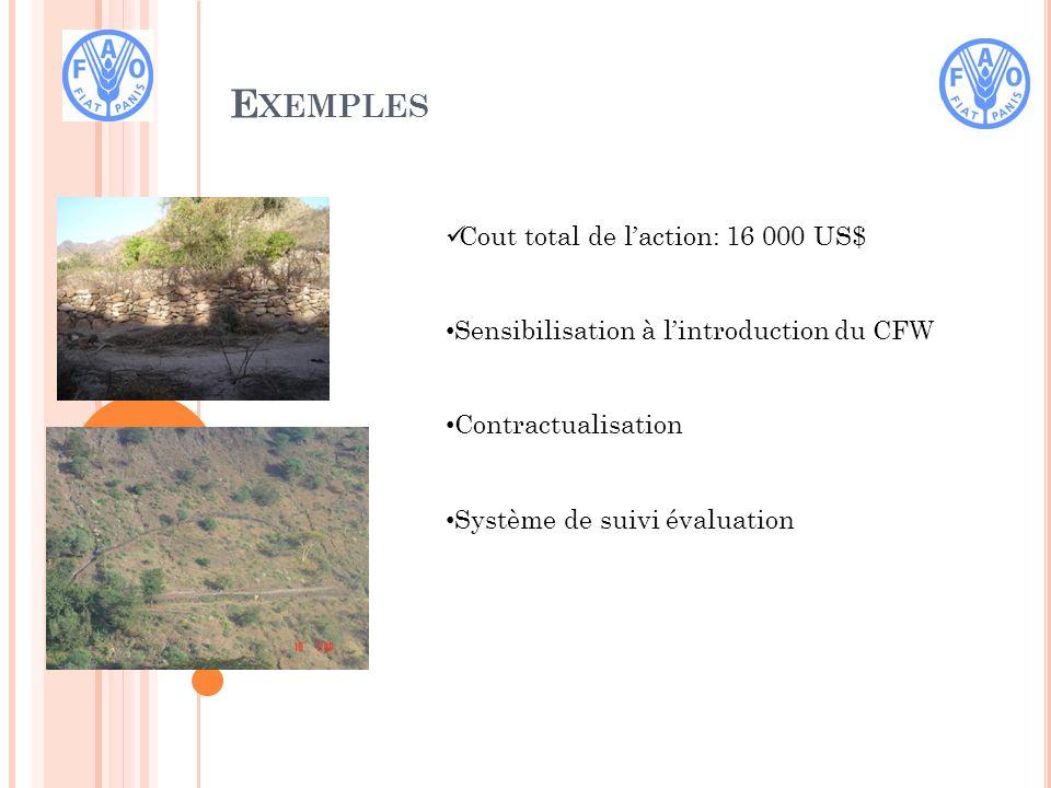 E XEMPLES Cout total de laction: 16 000 US$ Sensibilisation à lintroduction du CFW Contractualisation Système de suivi évaluation