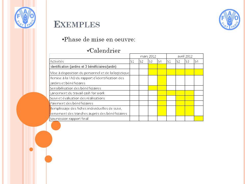 E XEMPLES Phase de mise en oeuvre: Calendrier