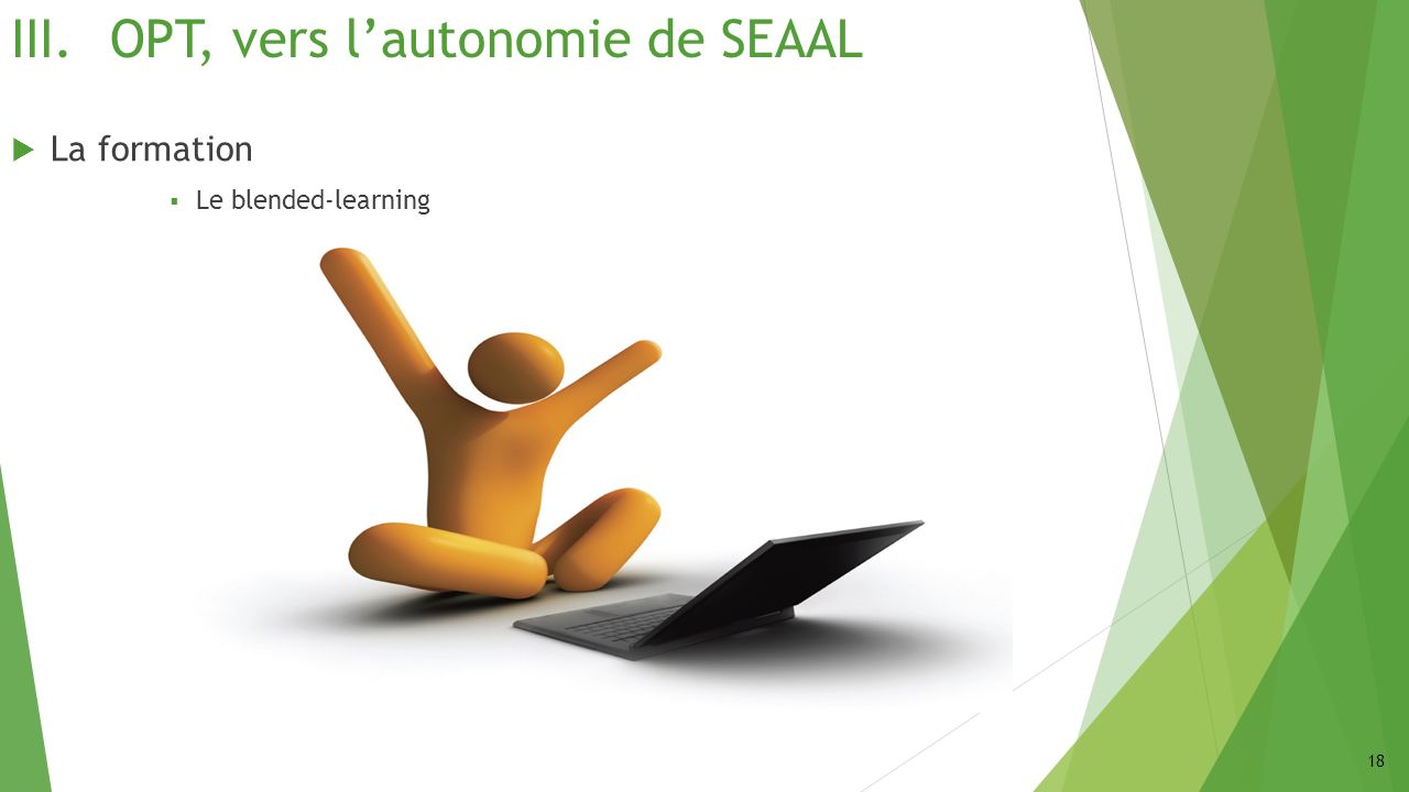 III.OPT, vers lautonomie de SEAAL La formation Le blended-learning 18