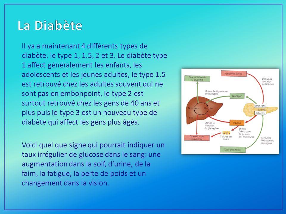 Il ya a maintenant 4 différents types de diabète, le type 1, 1.5, 2 et 3.