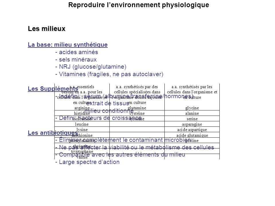 Reproduire lenvironnement physiologique Les milieux La base: milieu synthétique - acides aminés - sels minéraux - NRJ (glucose/glutamine) - Vitamines (fragiles, ne pas autoclaver) Les Suppléments - Indéfini: sérum (albumine/transferrine/hormones) extrait de tissus milieu conditionné - Défini: Facteurs de croissance Les antibiotiques - Éliminer complètement le contaminant microbien - Ne pas affecter la viabilité ou le métabolisme des cellules - Compatible avec les autres éléments du milieu - Large spectre daction