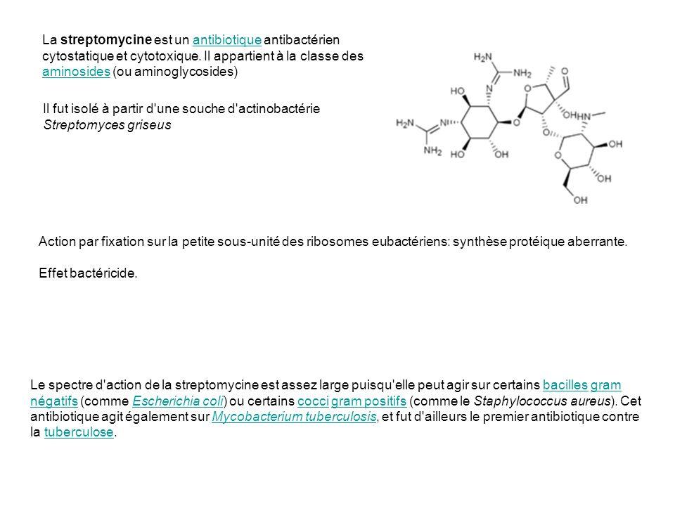 La streptomycine est un antibiotique antibactérien cytostatique et cytotoxique. Il appartient à la classe des aminosides (ou aminoglycosides)antibioti