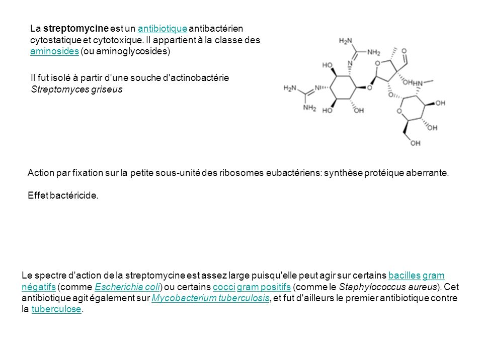 La streptomycine est un antibiotique antibactérien cytostatique et cytotoxique.
