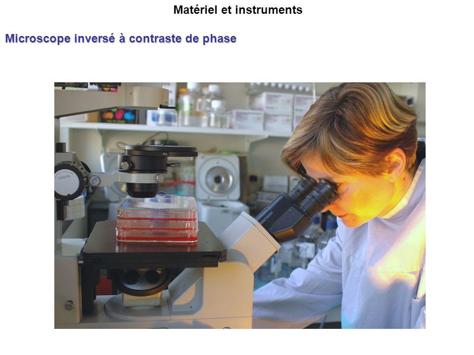 Matériel et instruments Microscope inversé à contraste de phase
