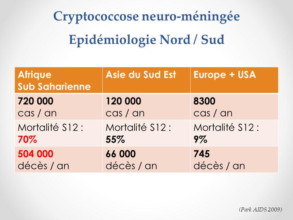 Cryptococcose neuro-méningée Epidémiologie Nord / Sud Afrique Sub Saharienne Asie du Sud EstEurope + USA 720 000 cas / an 120 000 cas / an 8300 cas /