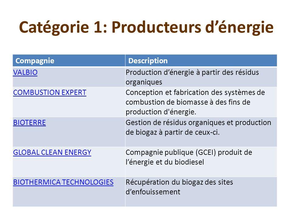 CompagnieDescription VALBIOProduction dénergie à partir des résidus organiques COMBUSTION EXPERTConception et fabrication des systèmes de combustion d
