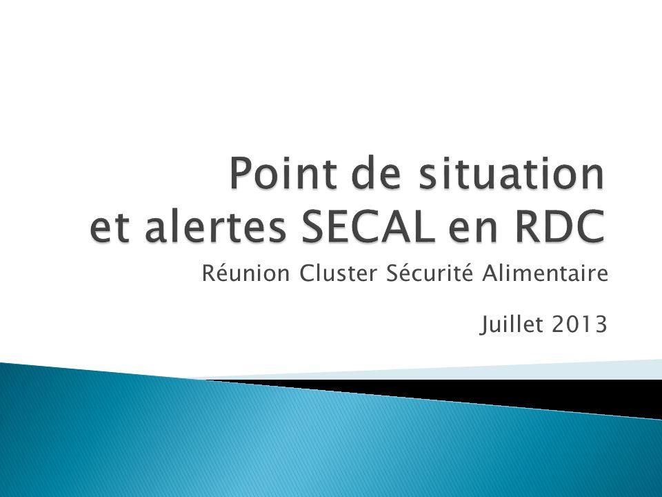 Réunion Cluster Sécurité Alimentaire Juillet 2013