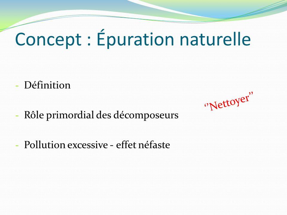 Concept : Épuration naturelle - Définition - Rôle primordial des décomposeurs - Pollution excessive - effet néfaste Nettoyer