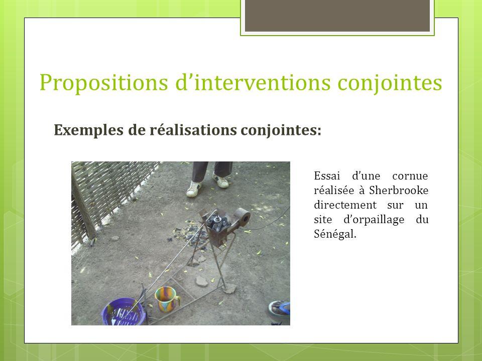 Exemples de réalisations conjointes: Propositions dinterventions conjointes Essai dune cornue réalisée à Sherbrooke directement sur un site dorpaillag