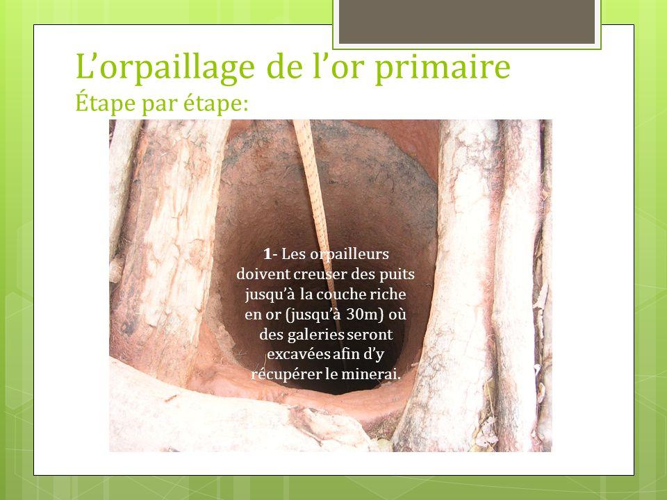 Lorpaillage de lor primaire Étape par étape: 1- Les orpailleurs doivent creuser des puits jusquà la couche riche en or (jusquà 30m) où des galeries se