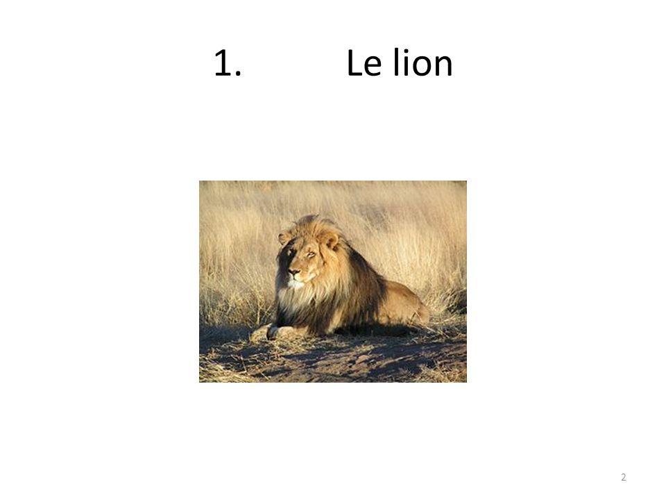 1.Le lion 2