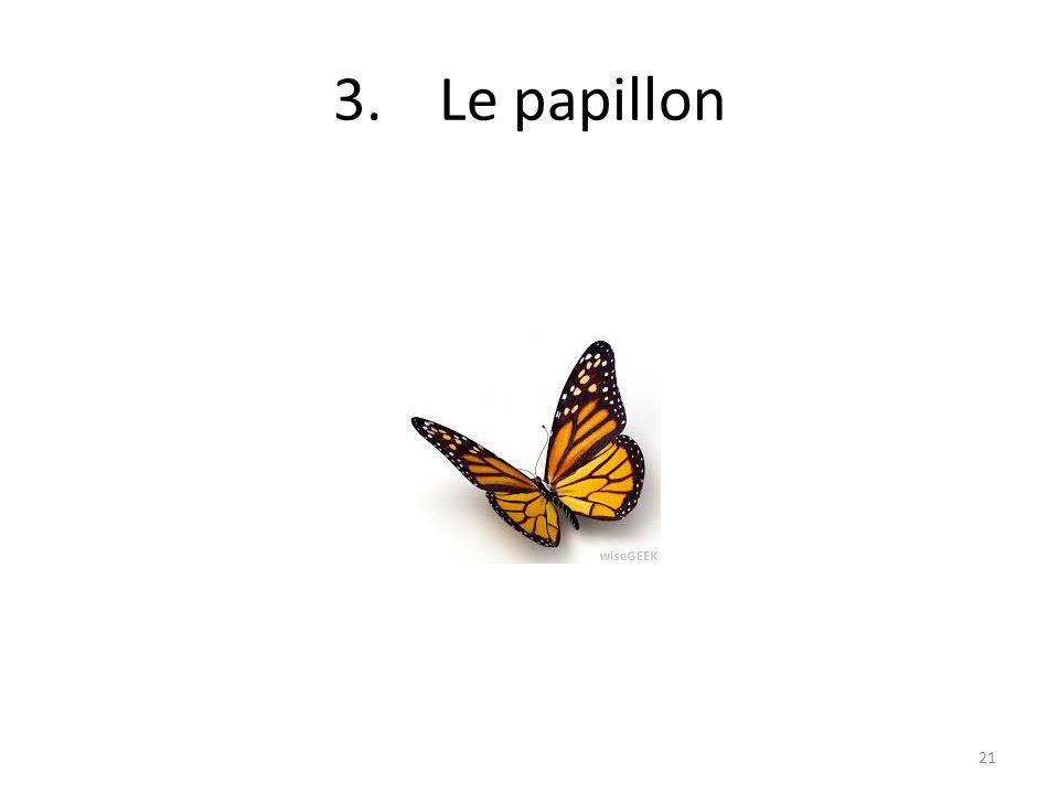 3.Le papillon 21