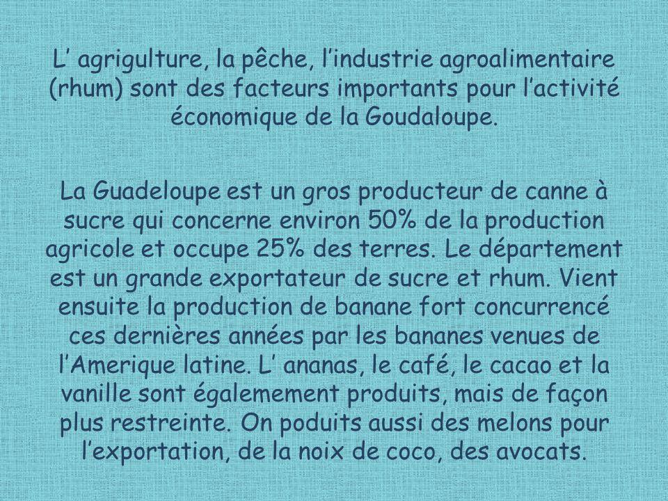 L agrigulture, la pêche, lindustrie agroalimentaire (rhum) sont des facteurs importants pour lactivité économique de la Goudaloupe. La Guadeloupe est
