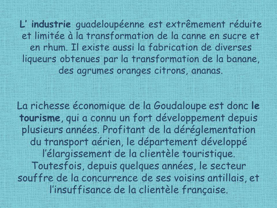 La richesse économique de la Goudaloupe est donc le tourisme, qui a connu un fort développement depuis plusieurs années.