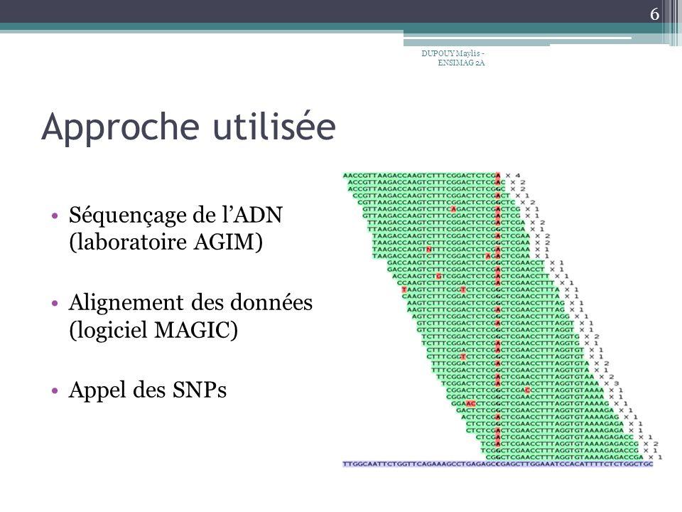 Approche utilisée Séquençage de lADN (laboratoire AGIM) Alignement des données (logiciel MAGIC) Appel des SNPs 6 DUPOUY Maylis - ENSIMAG 2A