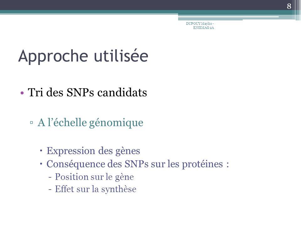 Approche utilisée Tri des SNPs candidats A léchelle génomique Expression des gènes Conséquence des SNPs sur les protéines : -Position sur le gène -Effet sur la synthèse 8 DUPOUY Maylis - ENSIMAG 2A