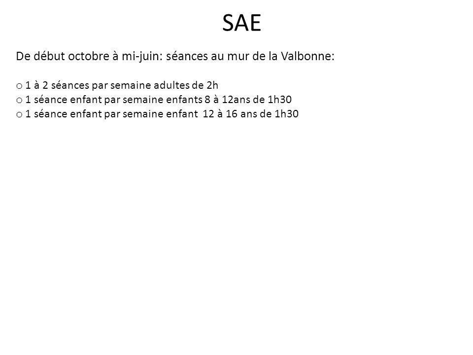SAE De début octobre à mi-juin: séances au mur de la Valbonne: o 1 à 2 séances par semaine adultes de 2h o 1 séance enfant par semaine enfants 8 à 12ans de 1h30 o 1 séance enfant par semaine enfant 12 à 16 ans de 1h30