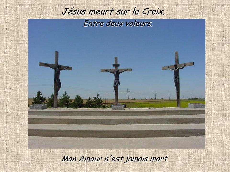 Entre 2 voleurs.Cest bien ce voleur qui vole le paradis à lheure dexpirer sur la croix.