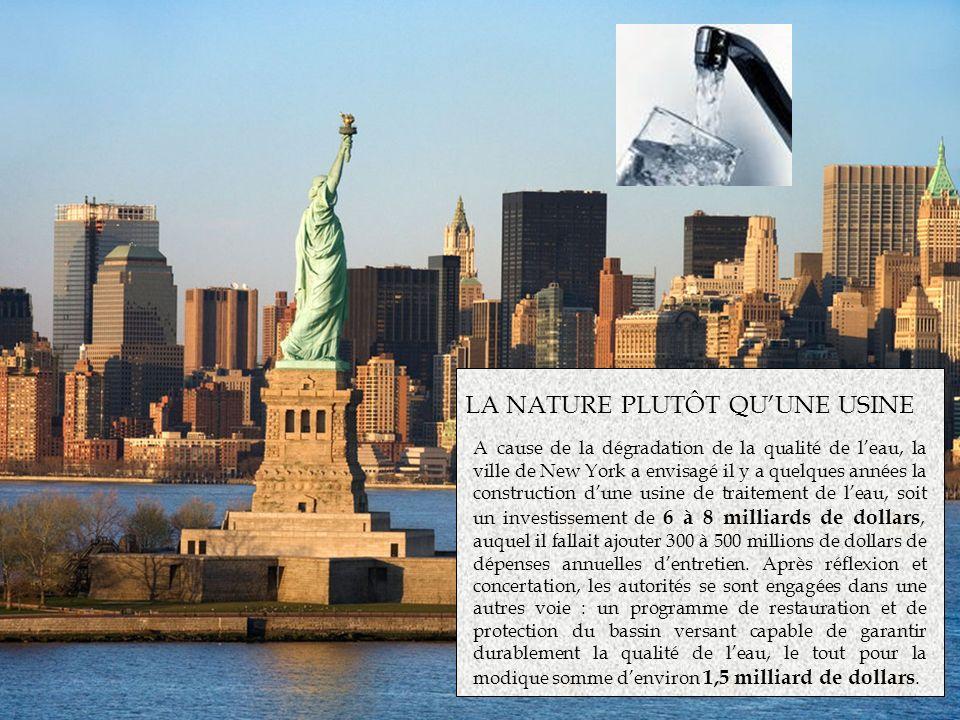 LA NATURE PLUTÔT QUUNE USINE A cause de la dégradation de la qualité de leau, la ville de New York a envisagé il y a quelques années la construction d