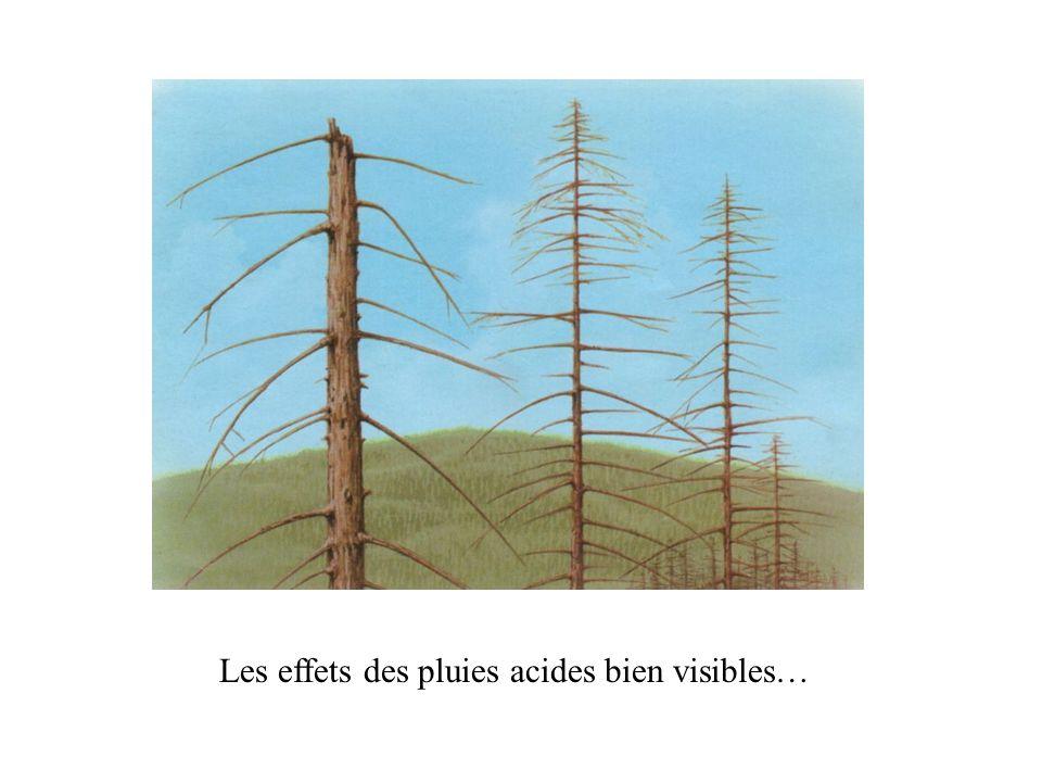 4- Préservation de la biodiversité En 1997, La revue Nature publia la synthèse dune centaine dévaluations portant sur 17 services rendus par les écosystèmes (régulations des gaz, du climat, pollinisation, production alimentaire…)Après une extrapolation à léchelle mondiale, les auteurs ont abouti pour ces services à une valeur : de 33 trillions de dollars, soit 1,8 fois le PNB de la planète.