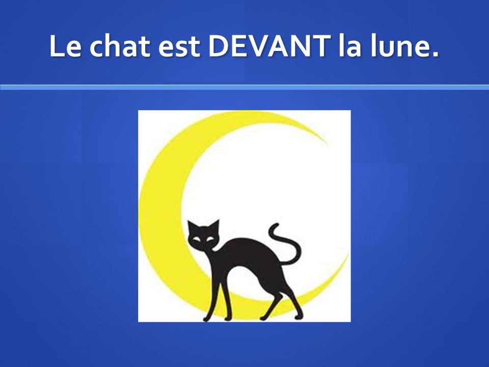 Le chat est DEVANT la lune.