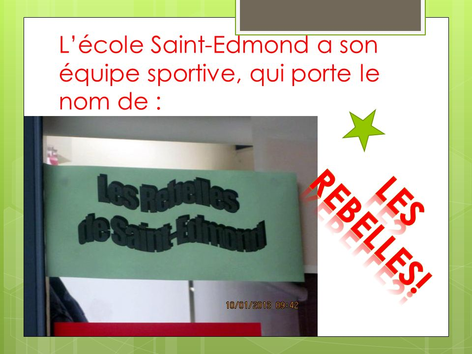 Lécole Saint-Edmond a son équipe sportive, qui porte le nom de :