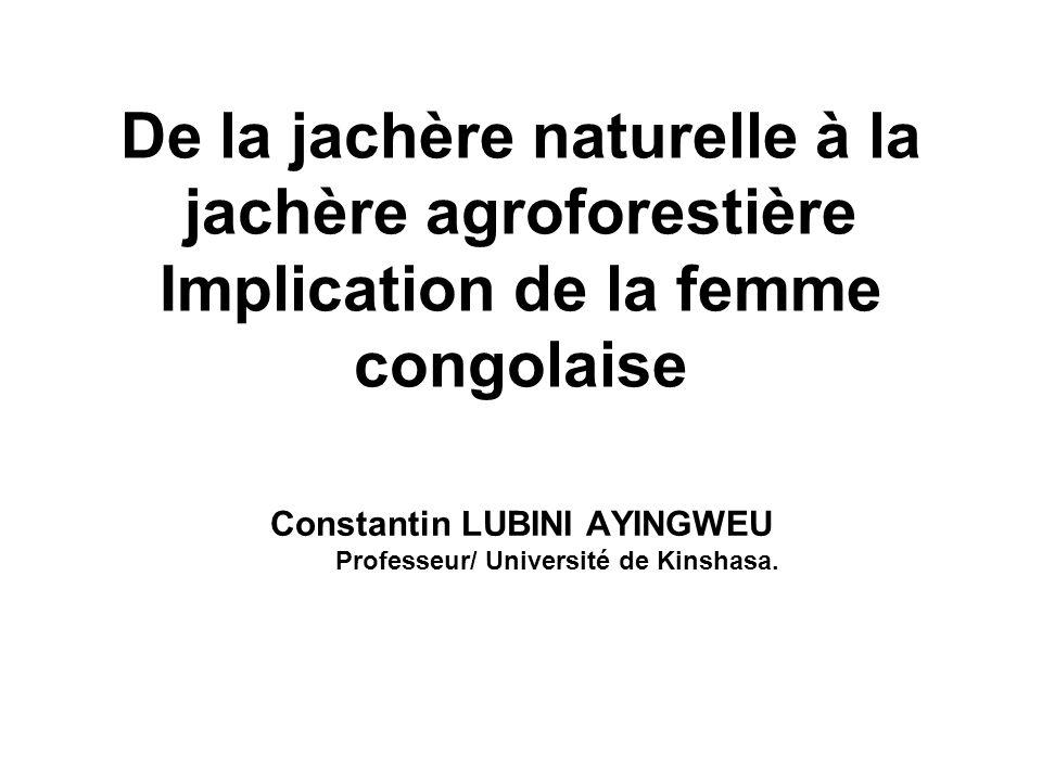De la jachère naturelle à la jachère agroforestière Implication de la femme congolaise Constantin LUBINI AYINGWEU Professeur/ Université de Kinshasa.