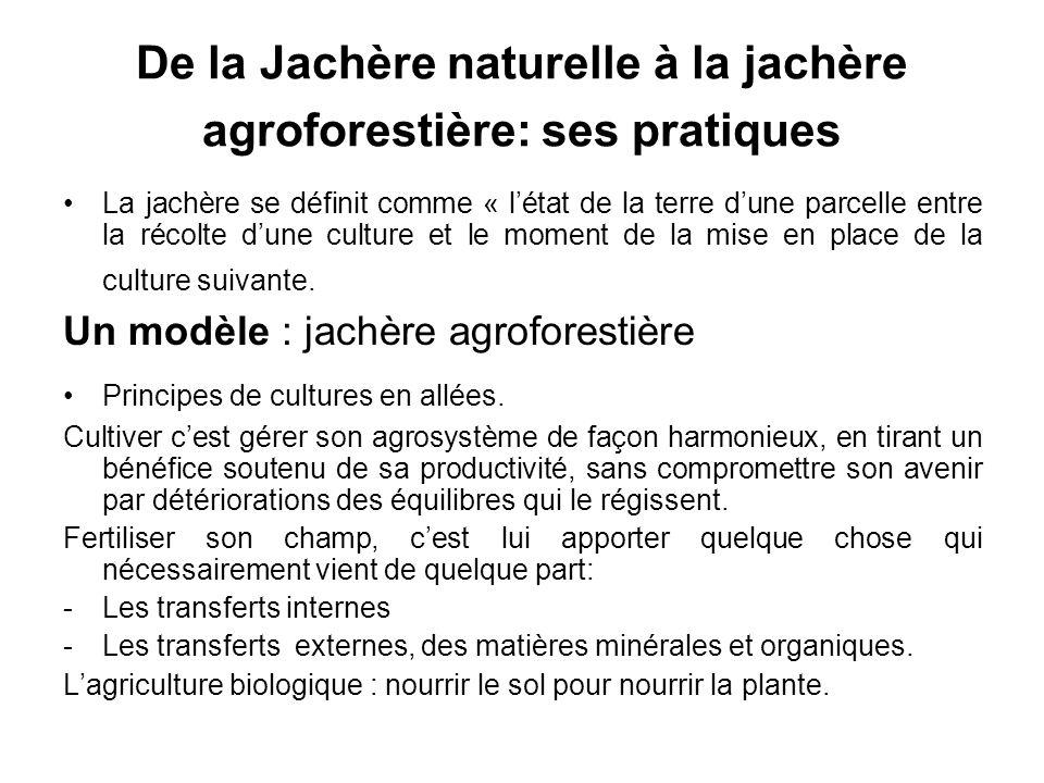 De la Jachère naturelle à la jachère agroforestière: ses pratiques La jachère se définit comme « létat de la terre dune parcelle entre la récolte dune culture et le moment de la mise en place de la culture suivante.