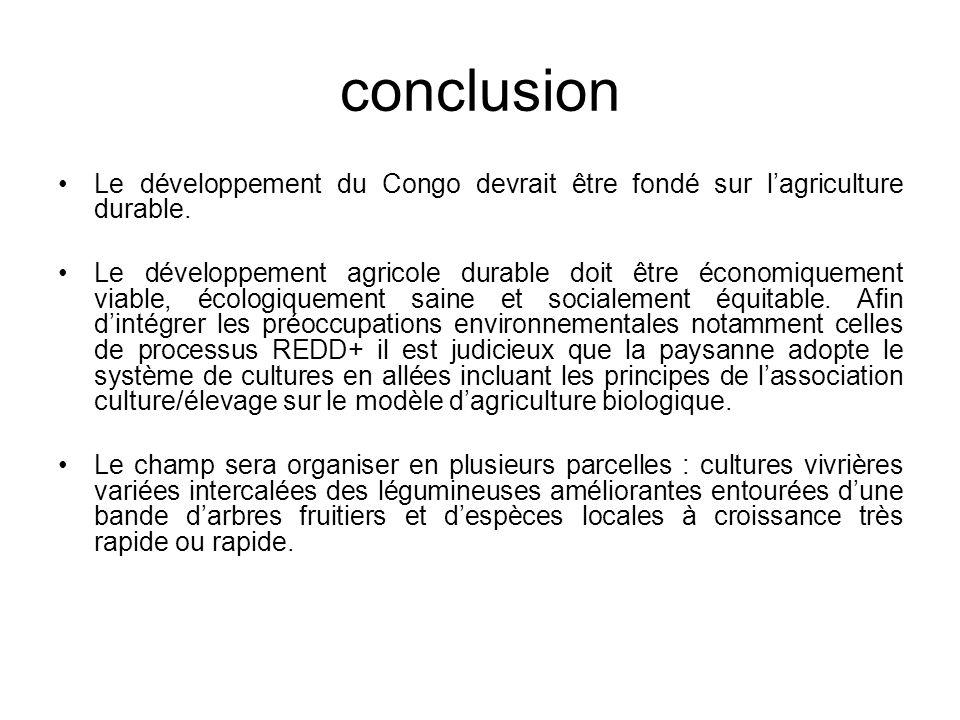 conclusion Le développement du Congo devrait être fondé sur lagriculture durable.