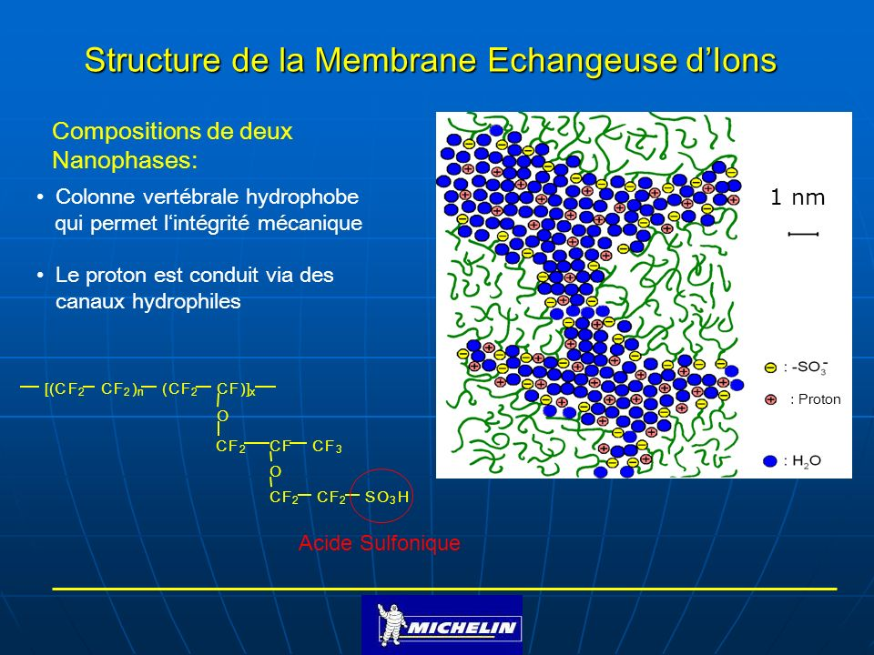 Structure de la Membrane Echangeuse dIons Colonne vertébrale hydrophobe qui permet lintégrité mécanique Le proton est conduit via des canaux hydrophiles [(CF 2 CF 2 ) n (CF 2 CF)] x SO 3 HCF 2 CF 2 O O CF 3 CFCF 2 Compositions de deux Nanophases: Acide Sulfonique : Proton 1 nm