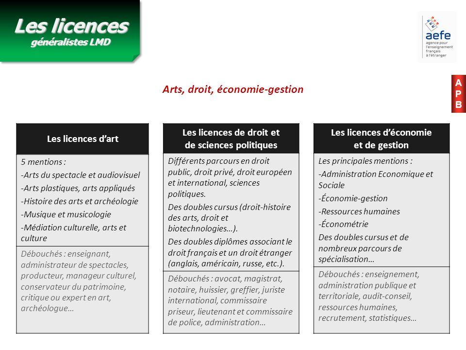 Les licences dart 5 mentions : -Arts du spectacle et audiovisuel -Arts plastiques, arts appliqués -Histoire des arts et archéologie -Musique et musico