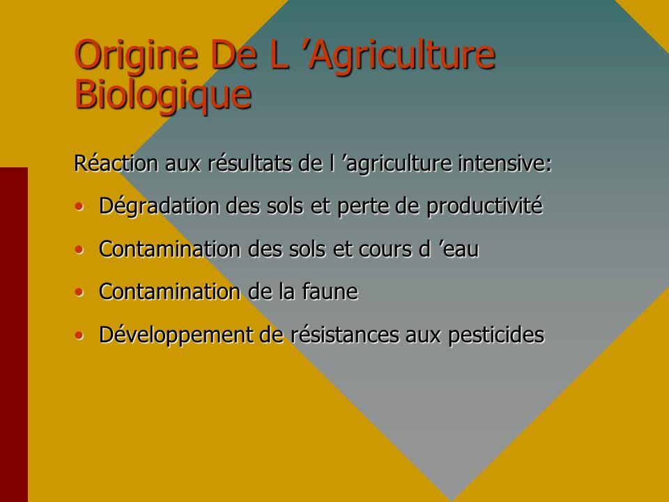 Qu Est-ce Que L Agriculture Biologique .