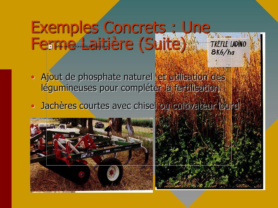 Exemples Concrets : Une Ferme Laitière (Suite) Jachère suivi par un engrais vert d automneJachère suivi par un engrais vert d automne Suivi d un labour à l automne en sol lourdSuivi d un labour à l automne en sol lourd