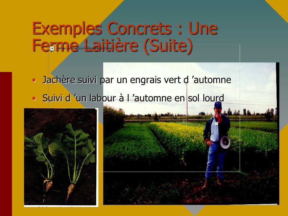 Exemple Concrets : Production De Fraise Biologique Fertilisation :45 à 63 t/ha de compost A ou B Compost A : résidus verts de la municipalité + résidus de cultures + fumier de volaille + 1 kg/m3 de phosphate de roche (vieilli 2 ans)Compost A : résidus verts de la municipalité + résidus de cultures + fumier de volaille + 1 kg/m3 de phosphate de roche (vieilli 2 ans) Compost B : compost de champignonnière utilisé pour culture de tomate et vieilli en tasCompost B : compost de champignonnière utilisé pour culture de tomate et vieilli en tas