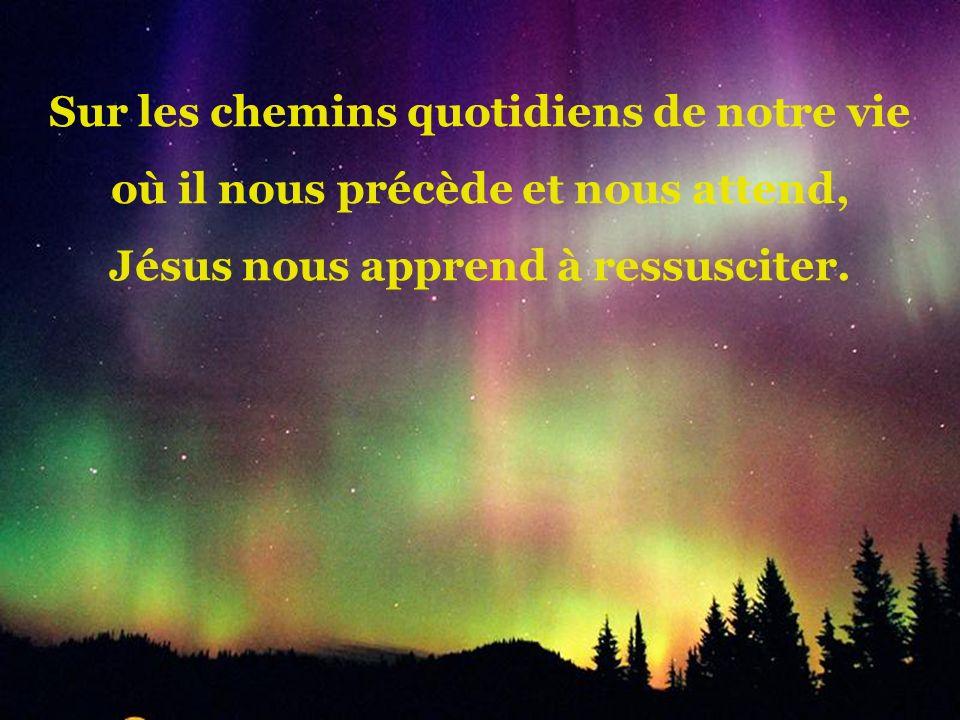 Sur les chemins quotidiens de notre vie où il nous précède et nous attend, Jésus nous apprend à ressusciter.