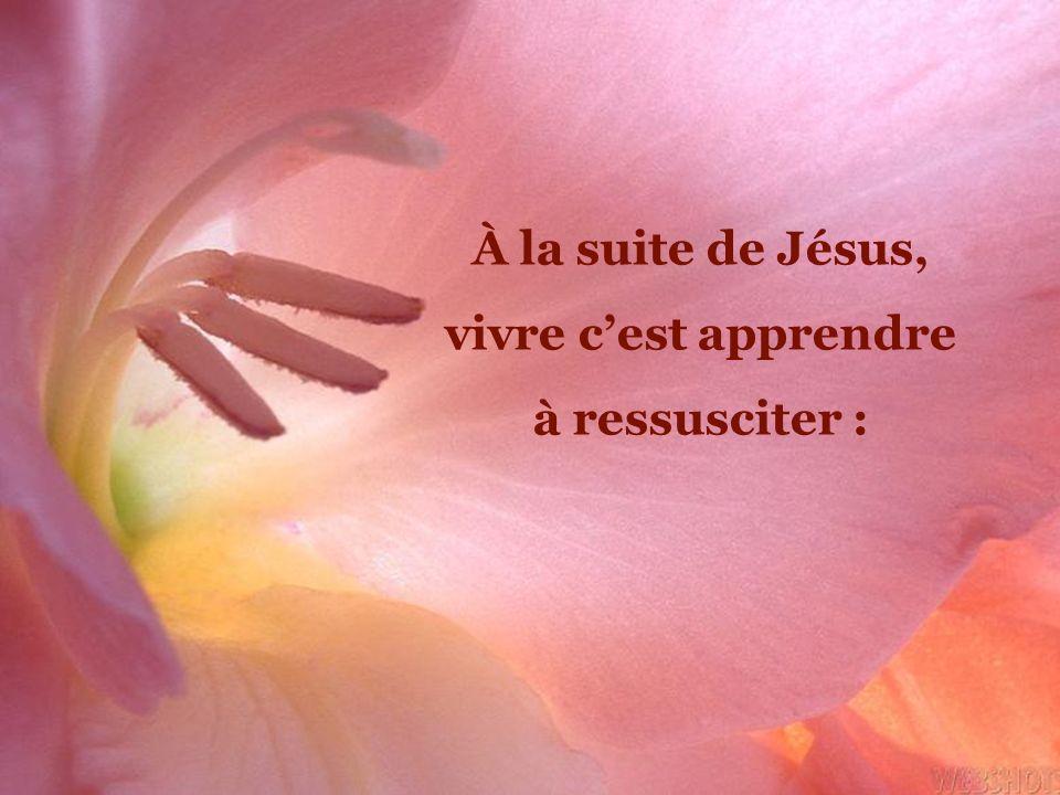 Jésus nous apprend à ressusciter car on apprend à ressusciter comme on apprend à faire ses premiers pas et à se tenir debout.