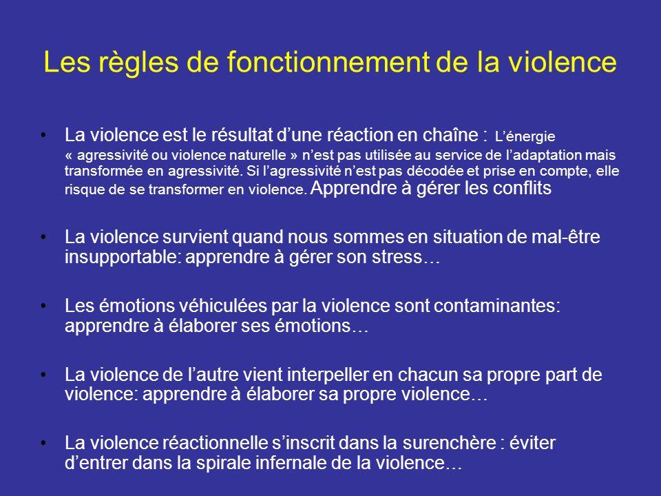 Les règles de fonctionnement de la violence La violence est le résultat dune réaction en chaîne : Lénergie « agressivité ou violence naturelle » nest