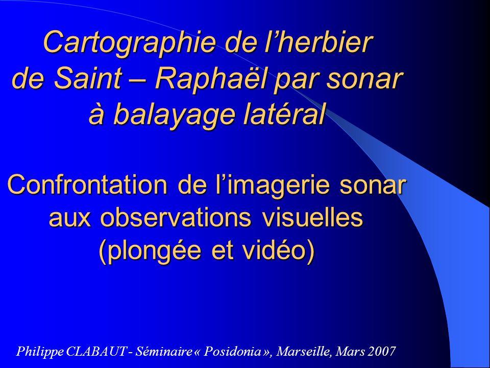 Cartographie de lherbier de Saint – Raphaël par sonar à balayage latéral Confrontation de limagerie sonar aux observations visuelles (plongée et vidéo
