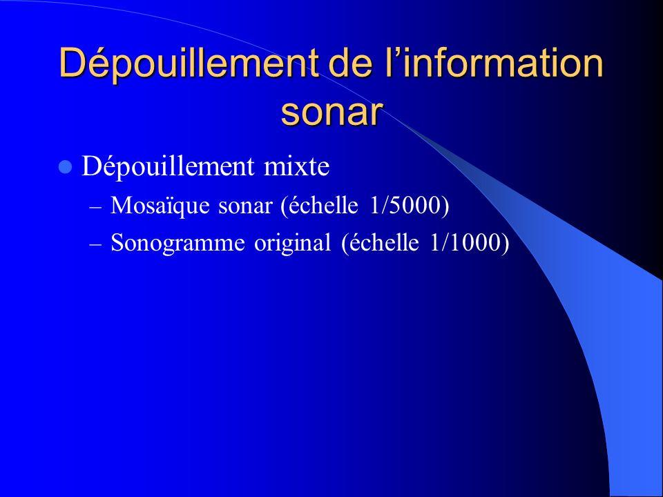 Dépouillement de linformation sonar Dépouillement mixte – Mosaïque sonar (échelle 1/5000) – Sonogramme original (échelle 1/1000)