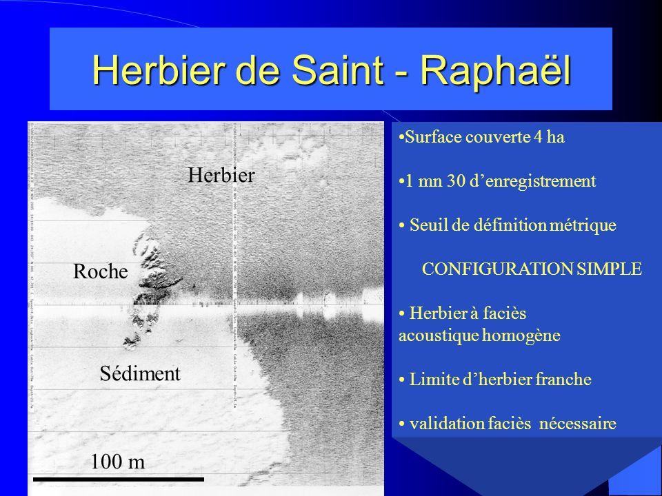 Herbier de Saint – Raphaël Rade dAGAY Rugosité plus forte Herbier à faciès acoustique homogène (faible rugosité) Limite inférieure complexe 100 m