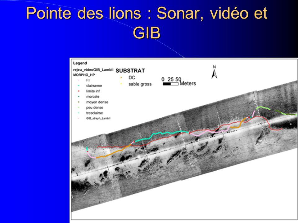 Résultats Généraux *Complémentarité des techniques (géographique, échelle…) *Bonne correspondance des résultats Positionnement des informations – Écart de 20 à 25m entre sonar et plongée (positionnement DGPS) – Ecart de 5 à 10m entre sonar et GIB