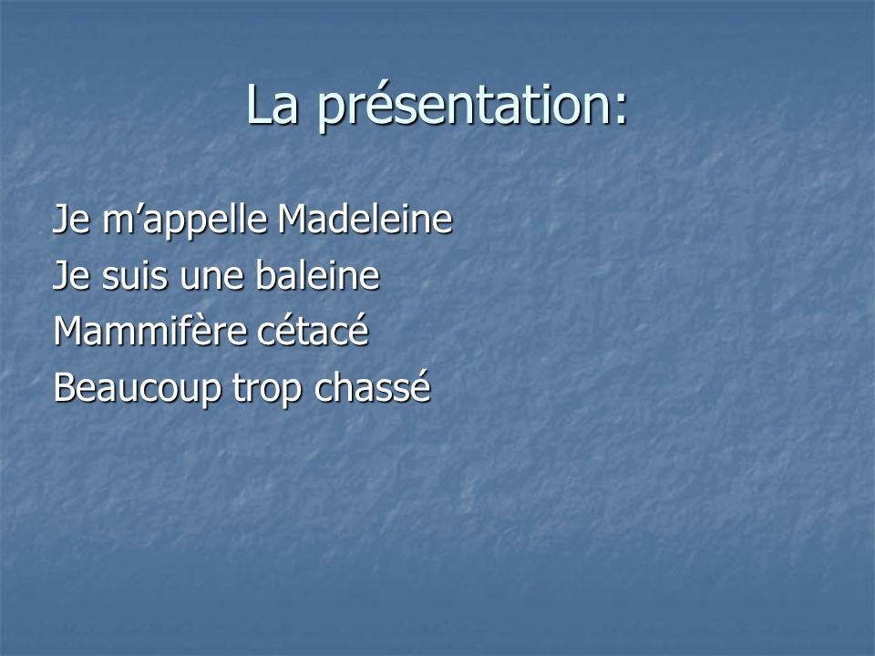 La présentation: Je mappelle Madeleine Je suis une baleine Mammifère cétacé Beaucoup trop chassé