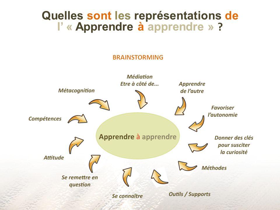 Ce que nous posons comme hypothèse Apprendre à apprendre peut sapprendre Notre expérience en tant qu « apprenant » (témoignage Tour de Hanoï) Notre expérience en tant quobservateur (témoignage ARL)