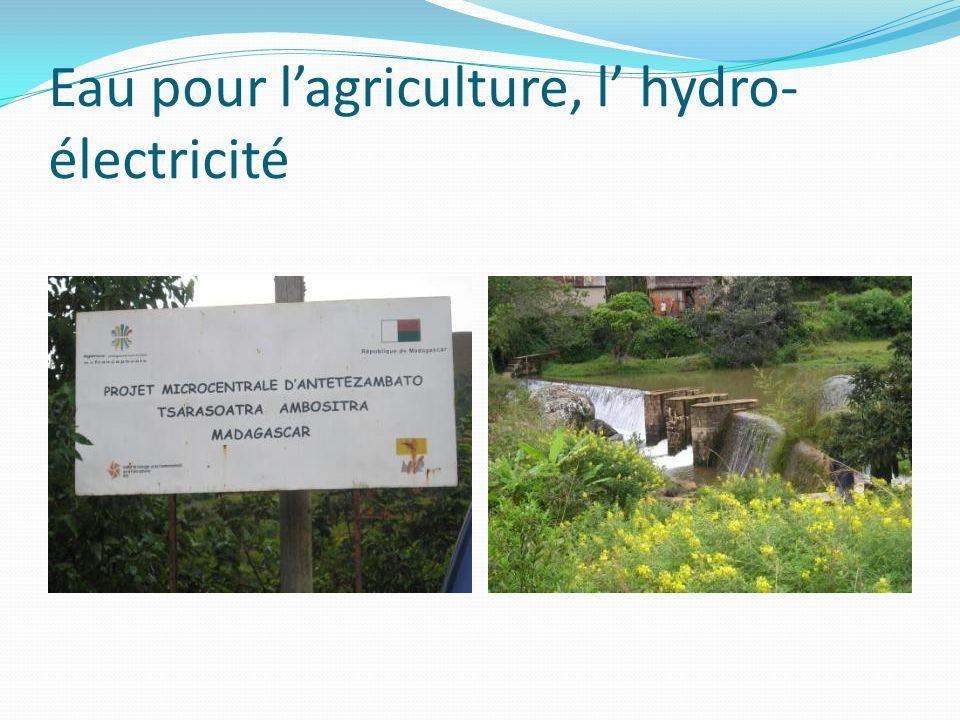 Eau pour lagriculture, l hydro- électricité