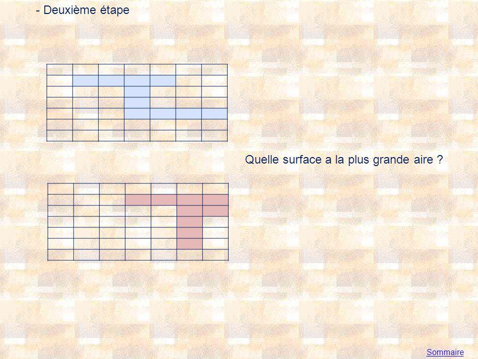 Sommaire - Deuxième étape Quelle surface a la plus grande aire ?