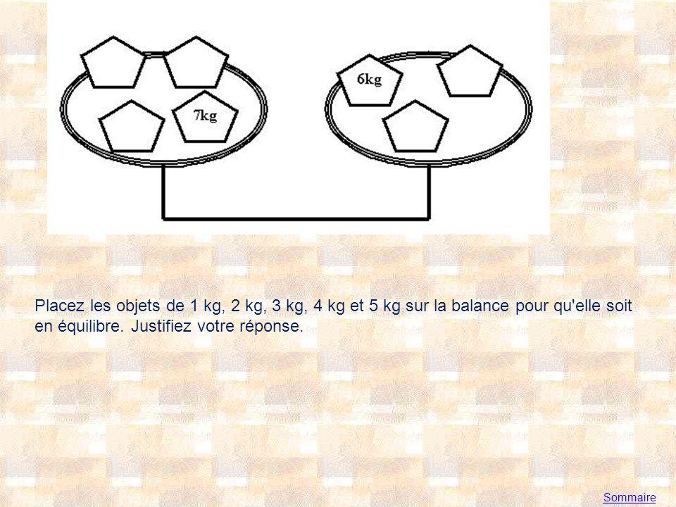 Sommaire Placez les objets de 1 kg, 2 kg, 3 kg, 4 kg et 5 kg sur la balance pour qu elle soit en équilibre.