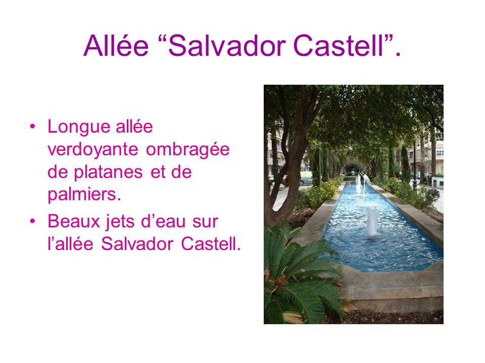 Allée Salvador Castell. Longue allée verdoyante ombragée de platanes et de palmiers. Beaux jets deau sur lallée Salvador Castell.